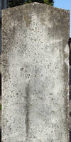 Concrete Texture - 28 by AGF81