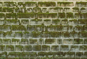 Stone Texture - 28 by AGF81