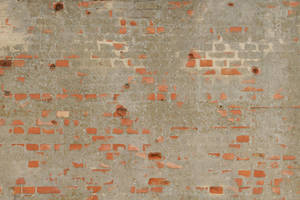 Brick Texture - 41 by AGF81