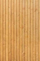 Wood Texture - 32 by AGF81