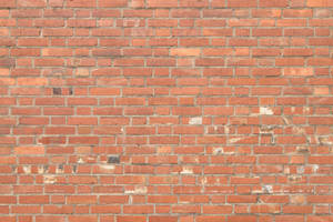 Brick Texture - 53 by AGF81