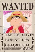 Hamster D. Luffy by sturmsoldat1