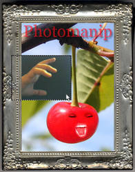 Photomanip Group ID Contest by psivamp