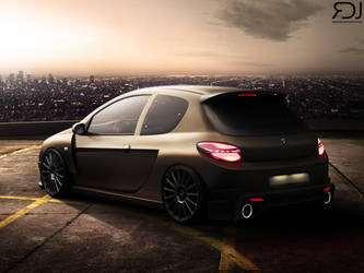 Peugeot 206 by RDJDesign