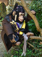 Pirate Monkey 3 by RowanShield