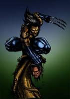 Wolverine on a stick by firepunk626
