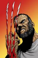 Old man Logan by firepunk626