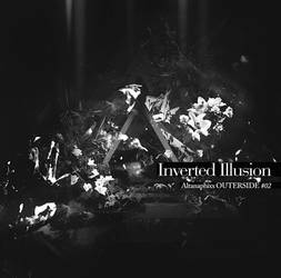 Inverted Illusion by mashanayuki