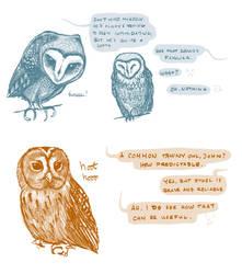 Owls by SirLemoncurd