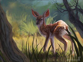 Deer Fawn by ElbenherzArt