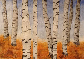 Autumn Birch Forest by MontyMouse