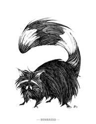 Raccoon by BenBASSO