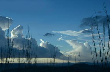 December sky by LabelaArt