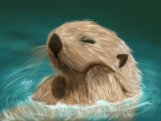 Otter by MariaChrystal