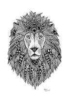 Lion by lauramarcuet