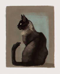 cat1701 by X-ZELFA