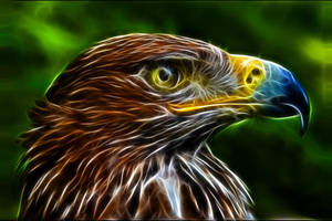 Fractal eagle by artofpain