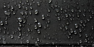 Gripping Drops by namespace