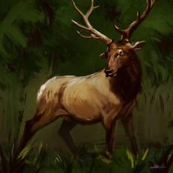 Deer-12 by MatteoAscente