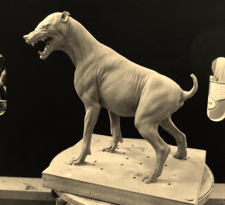 Hyena based study. by BOULARIS
