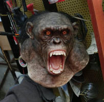 silicone chimp bust by BOULARIS