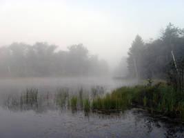 Foggy Lake - 10 by BVicius