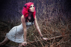 Forest Thorns by wormwood-doll