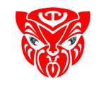 Te Reo Autobot by magigrapix