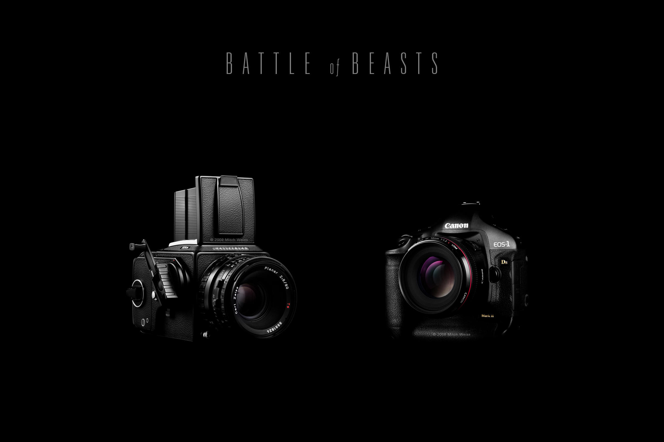 BATTLE of BEASTS by Omega300m