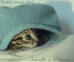 Cache-chat. by Veuillez-raccrocher