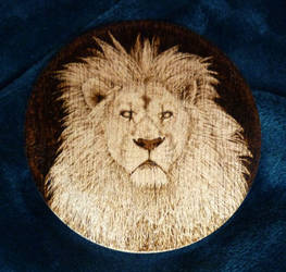 Lion Pyrography by squanpie