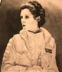 Princess Leia Prints by dmsmith017