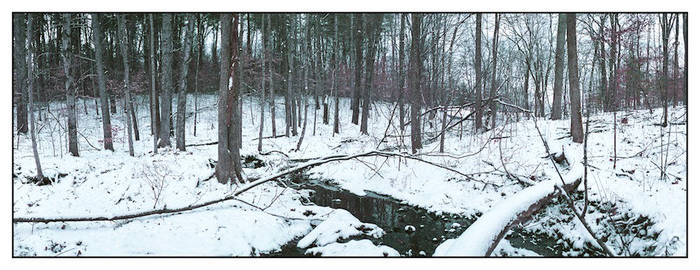 Snow creek.img369, with story by harrietsfriend