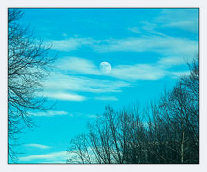 Daytime Moon. L1001271, with story by harrietsfriend