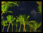 Night sky. DSCN4568, with story by harrietsfriend