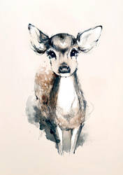 my deer by joanneyoung