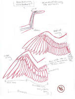 mini-feathered wing structure by Bee-chan
