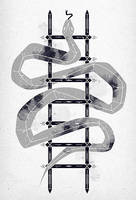 'snake and ladder' by dzeri