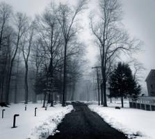 Foggy Winter by JohnKyo