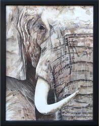 Elephant by BlackPinkOrBlue