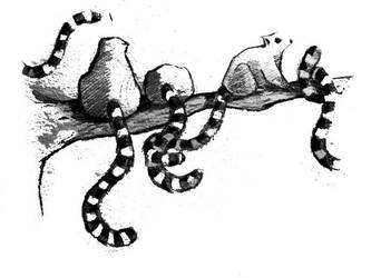 Lemures by Kris-Tea