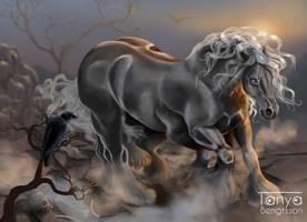 Sleipnir - Odins Horse by RaggedVixen
