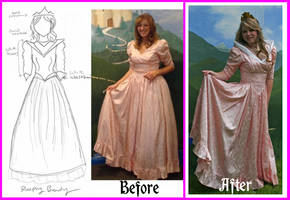 Aurora Costume Alteration by Durnesque