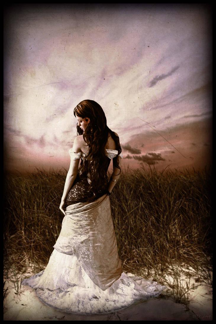 Sorrow Fields by drherbey