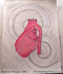 anatomy 1 by smallangryredhead