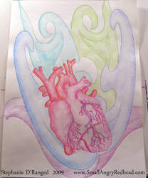 anatomy 2 by smallangryredhead