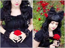 A Red Rose by Zarsu