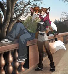 Fox couple by Zengel