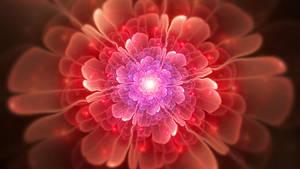 Apophysis Bloom 2 by g017