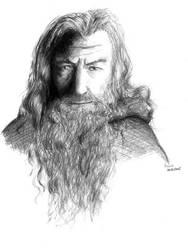 Gandalf by Nassia